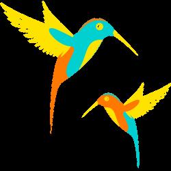 Colibri-v1.6-fit